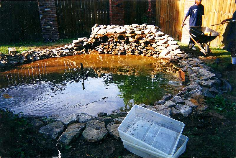 how to clean a fish pond